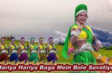 Hariya Hariya Baga Mein Bole Suvatiyoo Marwadi Holi Song